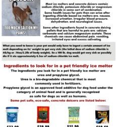 Ice melters with chloride will make your pet sick